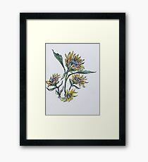 Sunflower Crazy Framed Print