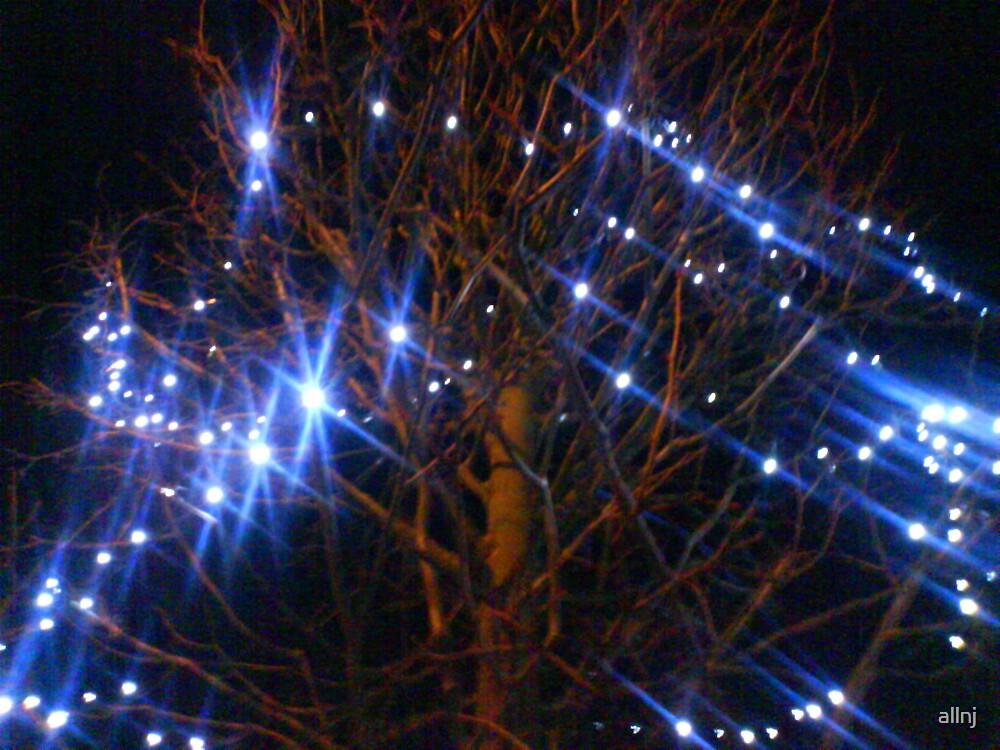 Fairy Lights by allnj