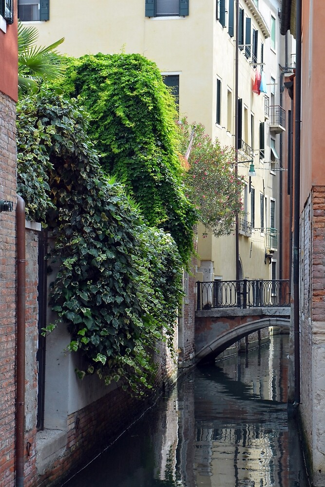 Narrow canal in Venice with building covered in green plants by oanaunciuleanu