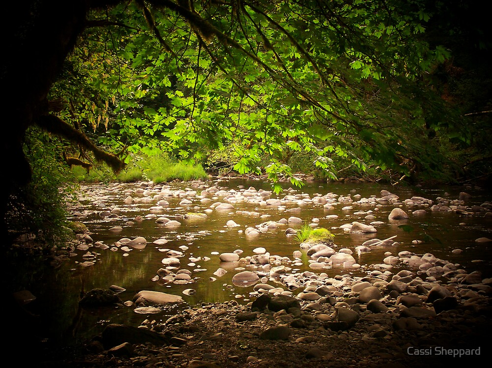 river with tree by Cassi Sheppard