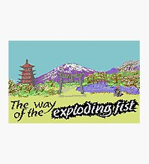 Way Of The Exploding Fist Photographic Print