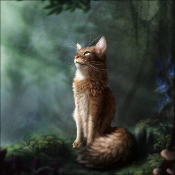 Forest Somali Cat by Felidire