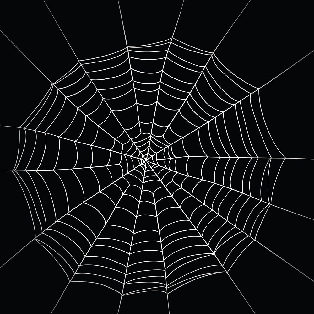 White spider net by gregc85