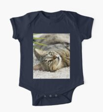 Cute Gray Tabby Cat On It's Back One Piece - Short Sleeve