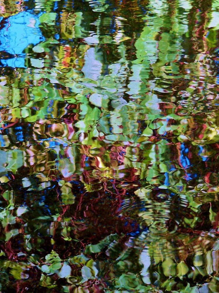 VIVID WATER REFLECTIONS by lynareid