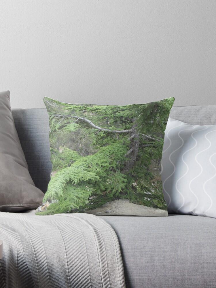 green pine tree by designer437