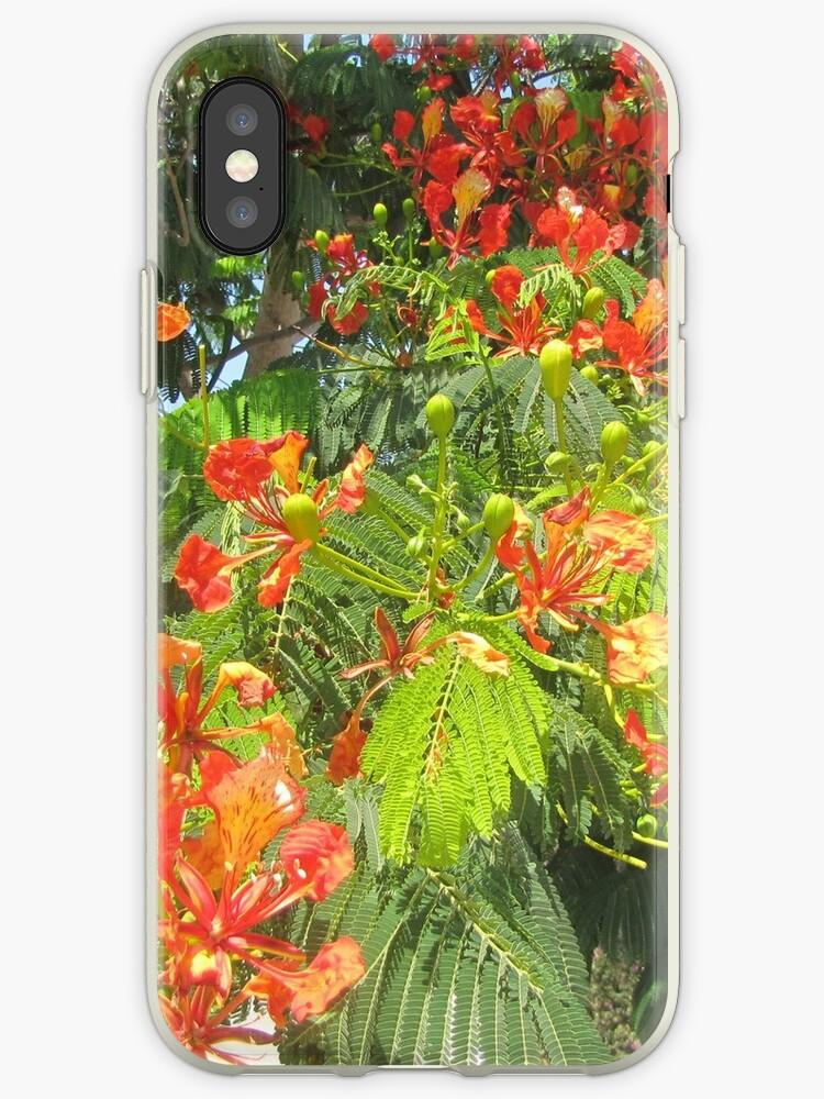 orange tropical flower by designer437