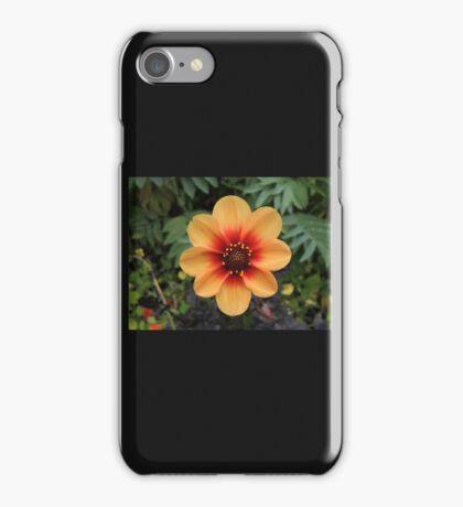 Sunshine In The Soil iPhone Case/Skin