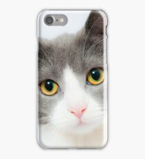 Beautiful Cat With Adorable Eyes  iPhone Case/Skin