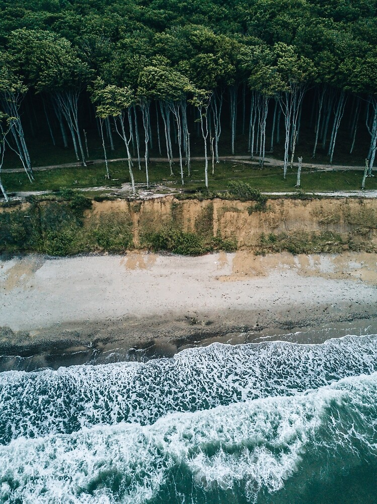 Waves, Woods, Wind and Water - Landscape Photography by Michael Schauer