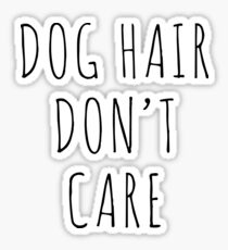 Dog Hair Funny Quote Sticker