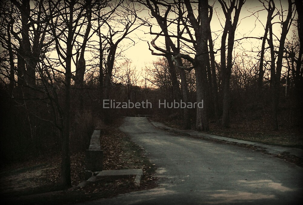 Road to nowhere by Elizabeth  Hubbard