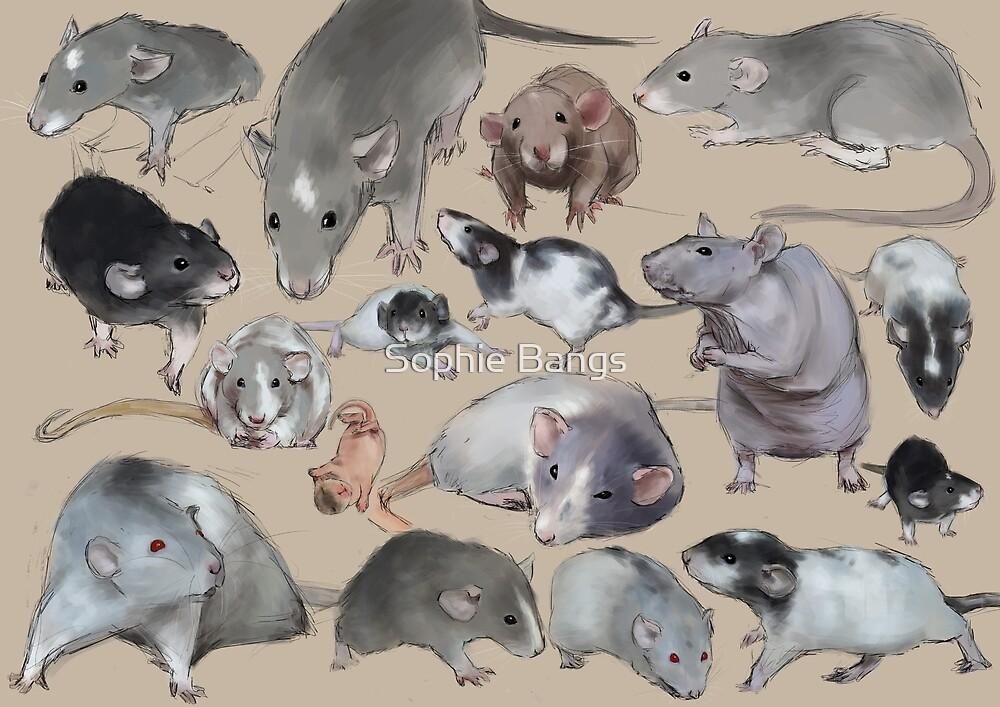 Rat lover by Sophie Bangs