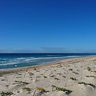 Beautiful Beach in Australia.  by FangFeatures