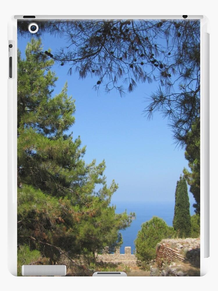 Pine tree, sea and sky landsape by designer437