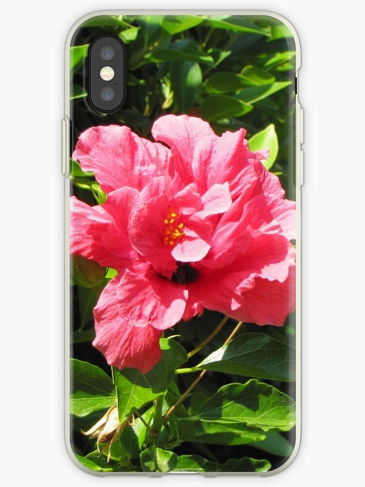 pink hibiscus flower by designer437