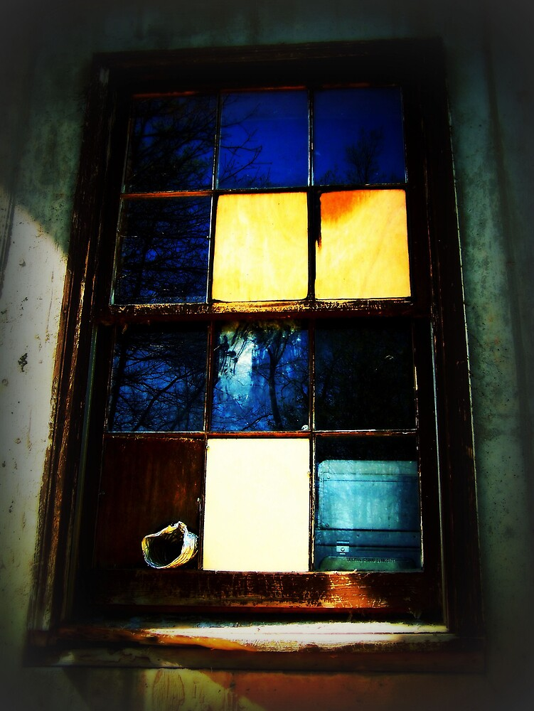 Window by Kristie King