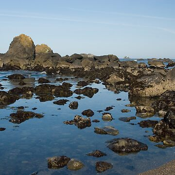 Rocky Coast by melastmohican