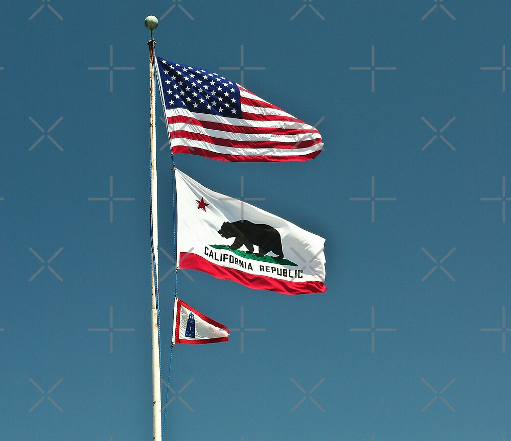 California Flags by melastmohican