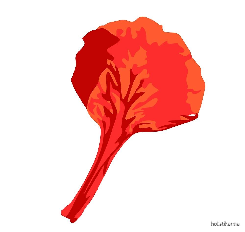 petalo flamboyan by holistikarma