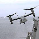 Ein MV-22B Osprey hebt vom amphibischen Transportdockschiff USS Mesa Verde ab. von StocktrekImages
