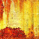 rustic by Lynne Prestebak