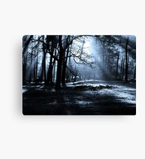 Midnight Forest Canvas Print