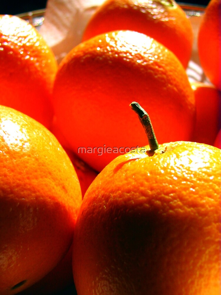 Orange you happy? by margieacosta
