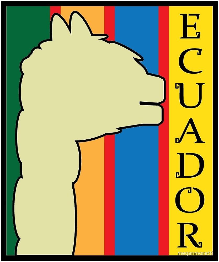 Ecuador by meganmoretti