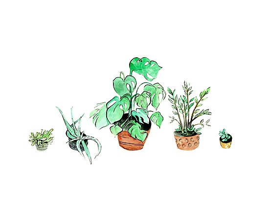Plant Line (White) by scatterbee