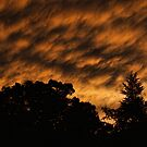 After Storm Sunset by Rick  Friedle