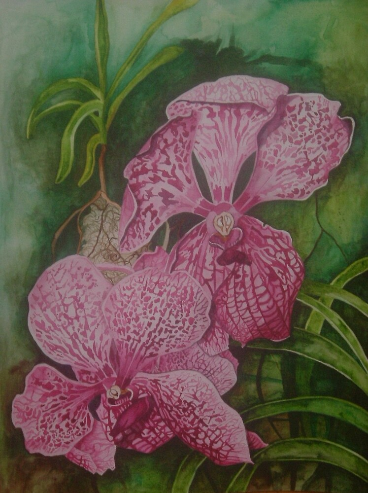 Pink Orchids by Megan Lane