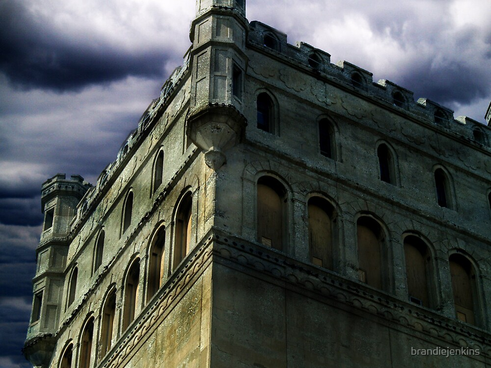 Young castle by brandiejenkins