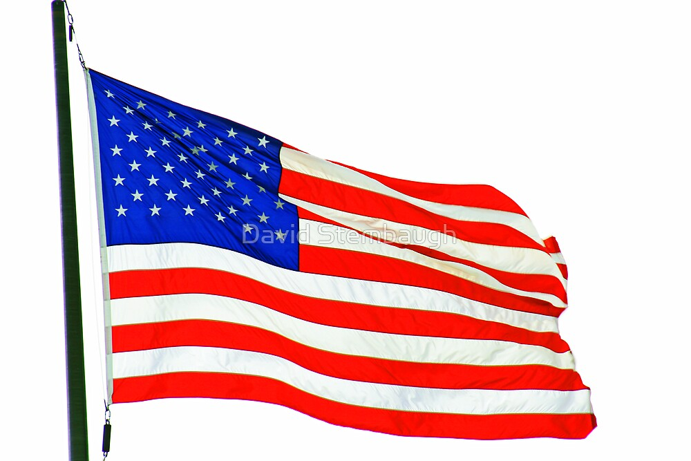 USA Flag by David Stembaugh