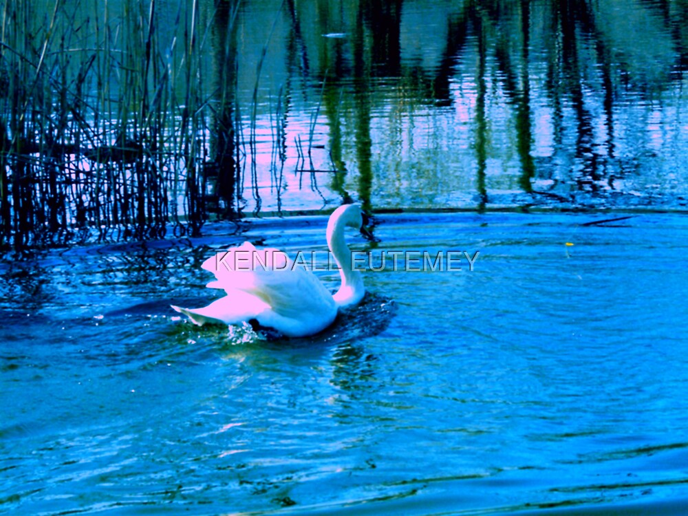 SWAN SONG by KENDALL EUTEMEY