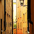 Alley View In Stockholm by Barry W  King