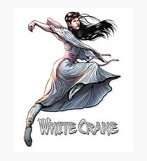 White Crane kung fu girl T-Shirt Photographic Print