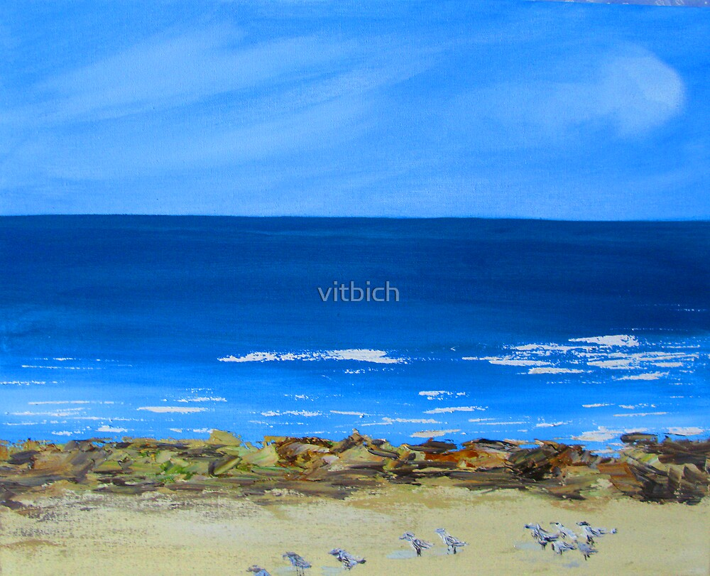 Seagulls on Maroubra beach by vitbich