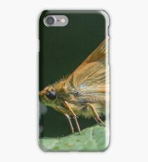 Skipper Butterfly iPhone Case/Skin