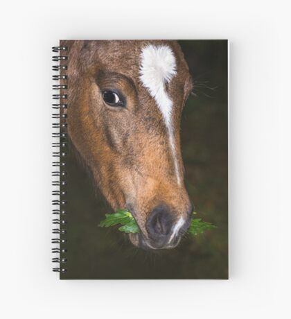 Foal and Leaves Spiral Notebook