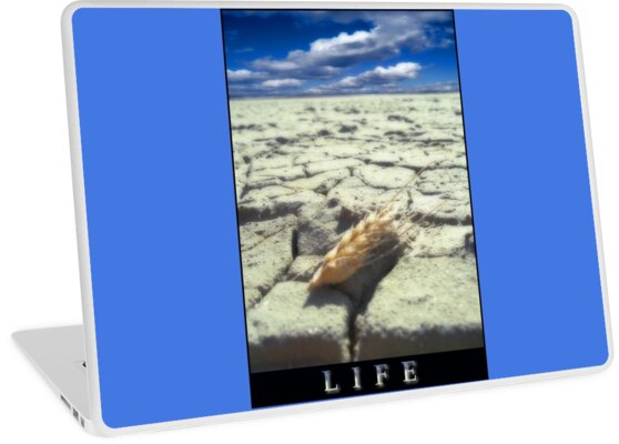 LIFE  by karmadesigner
