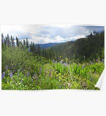 Cascade Mountain Beauty Poster