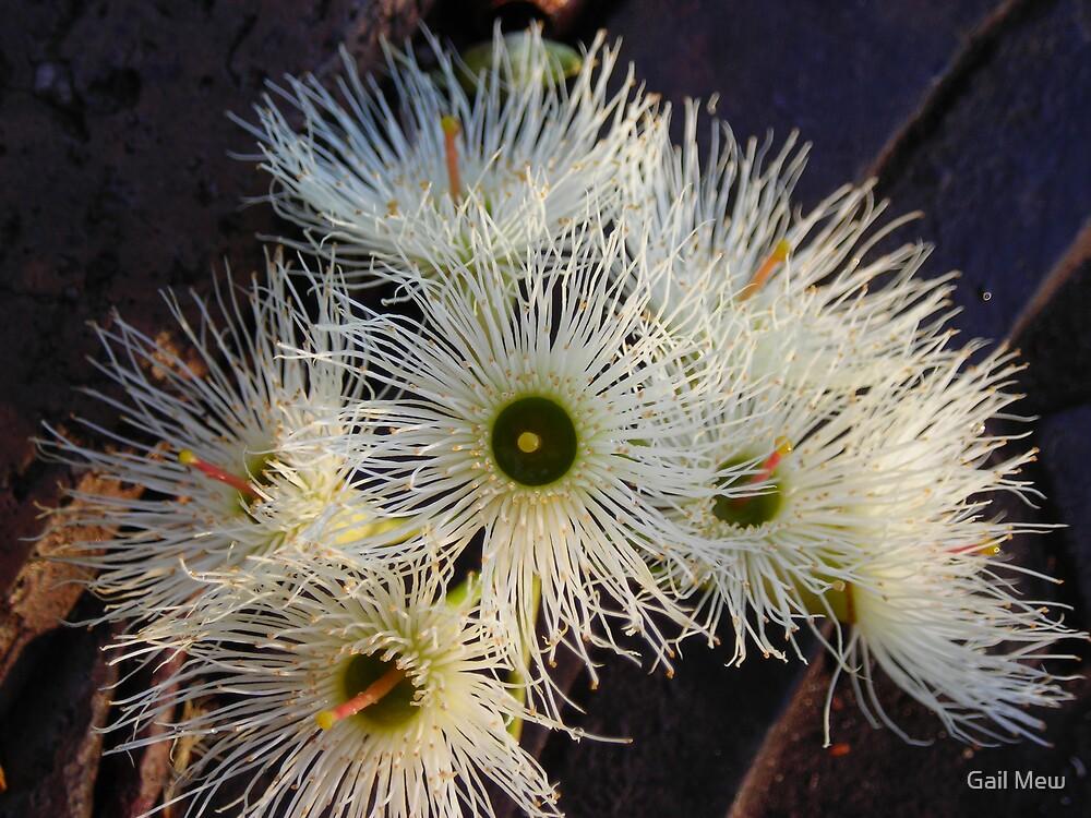 """""""Lemon Blossom"""" by Gail Mew"""