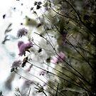 Ballard Summer Flowers by Marcia Glover