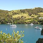 As peaceful as it gets......Great Barrier Island......! by Roy  Massicks