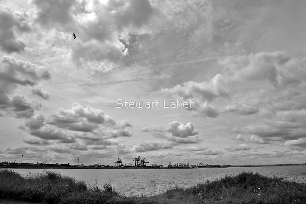 Tees Docks by Stewart Laker