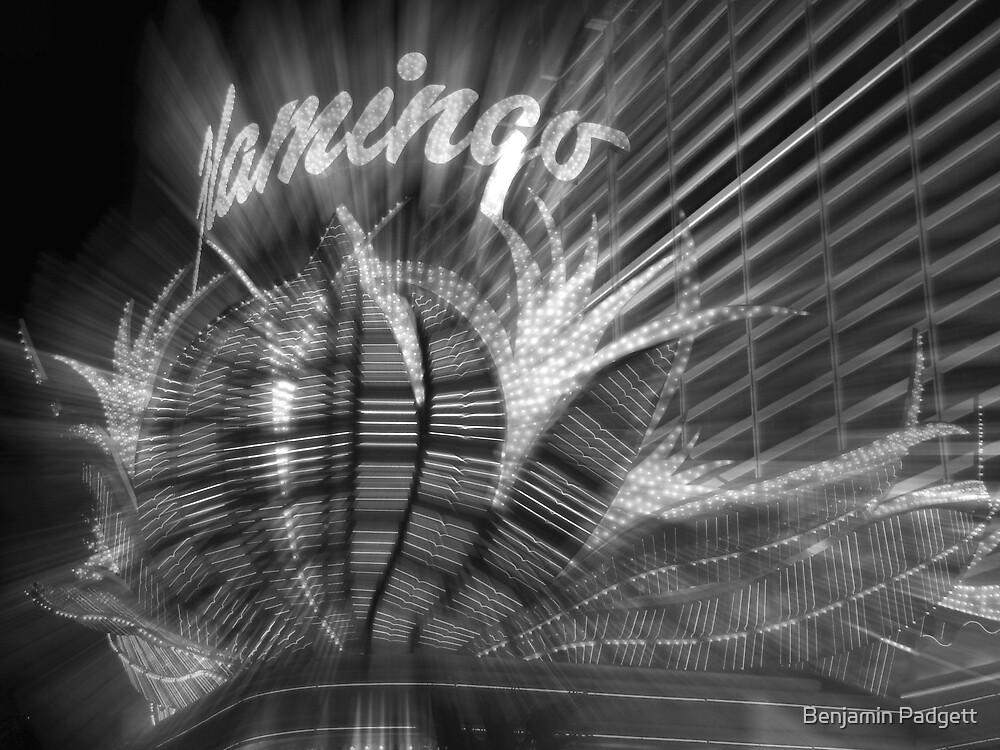 Vegas Lights in B&W No. 1 by Benjamin Padgett