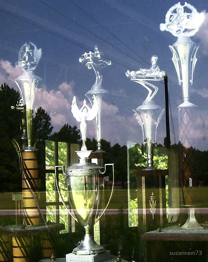 Trophies in the Window by suzannem73