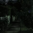 night path by xXDarkAngelXx