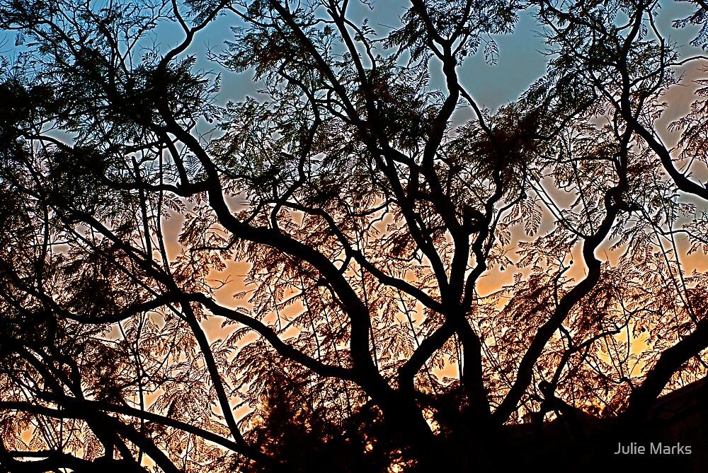 Windswept by Julie Marks